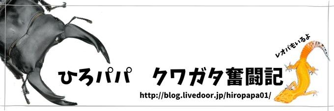 ひろパパ クワガタ奮闘記のコピー