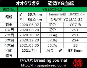 YG20C1-13ラベル
