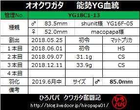 YG18C1-13