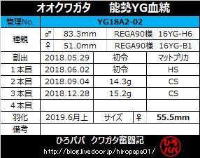 YG18A2-02(1)