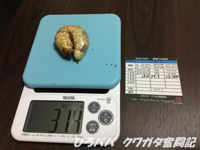 YG18A2-10 (4)