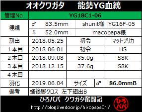 YG18C1-06