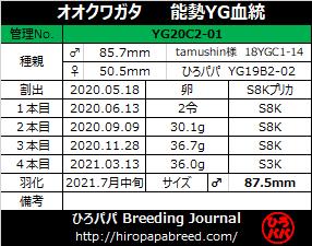 YG20C2-01ラベル