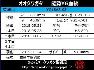 YG18A3-05