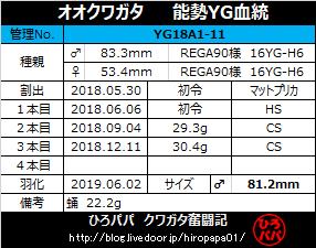 YG18A1-11