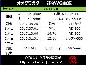 YG17B-01
