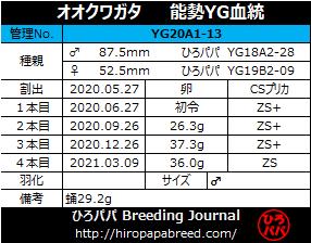 YG20A1-13