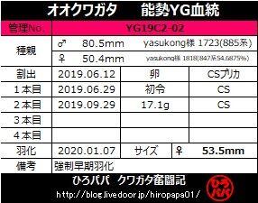 YG19C2-02
