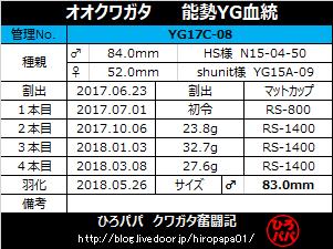 YG17C-08-