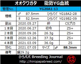 YG20A1-13ラベル
