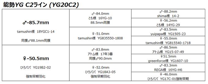 YG20C2背景