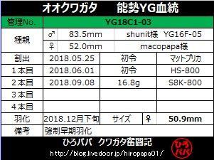YG18C1-03 (2)