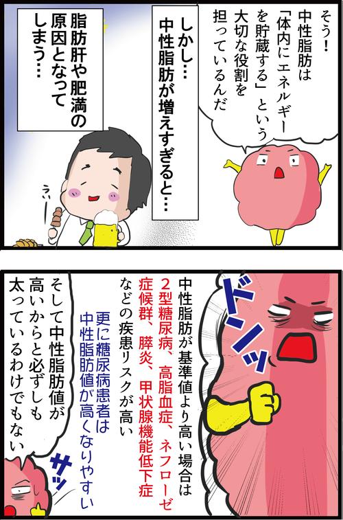 【血糖値】中性脂肪が高いとなぜ怖いのか?低すぎてもNG…!?2