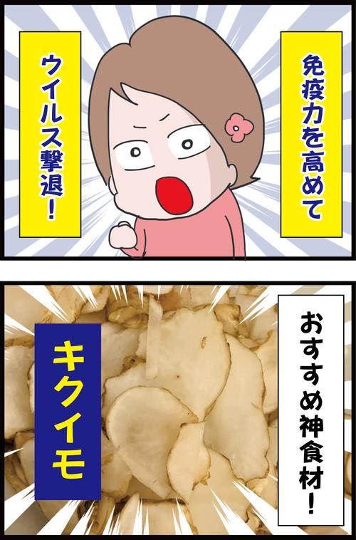 【神食材】ダイエットに免疫力アップ、血糖コントロールに効果抜群!オススメ野菜と言えばコレ!1