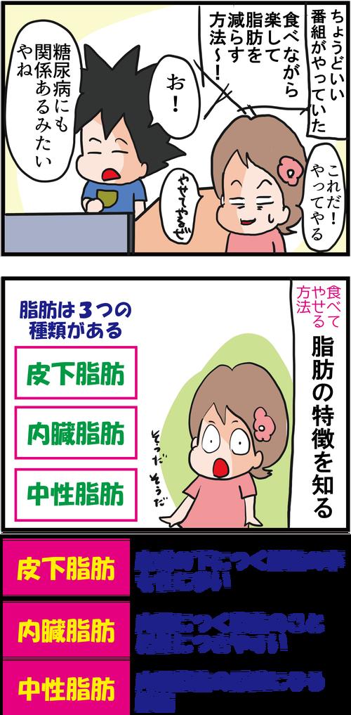 【血糖値コントロール】食べて脂肪を燃やすダイエット?!2