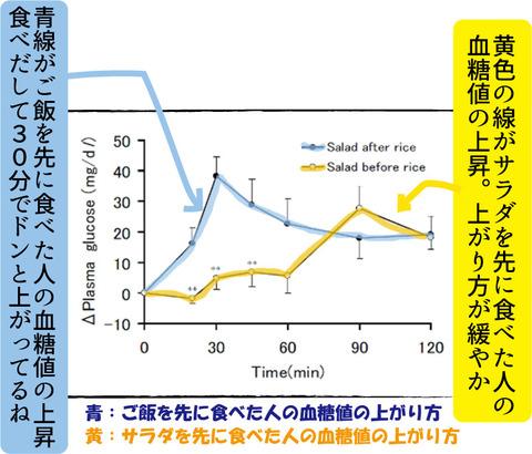 【糖尿病の教育入院7】おすすめの食事のとり方3