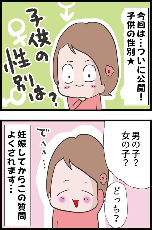 【妊娠6カ月】気になるお腹の子供の性別は…?聞く?聞かない?(妻の高齢妊娠編㊵)1