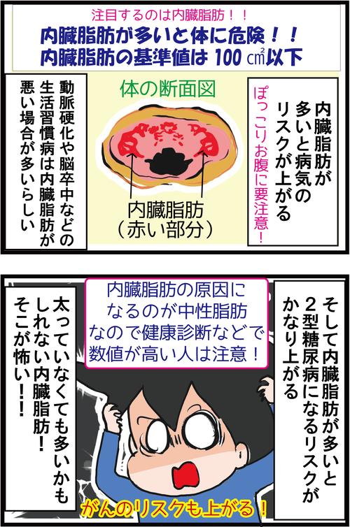【血糖値コントロール】食べて脂肪を燃やすダイエット?!3