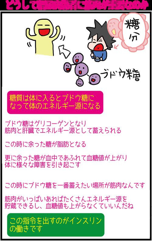 【血糖値と筋肉】野菜ファーストに潜む落とし穴!?4
