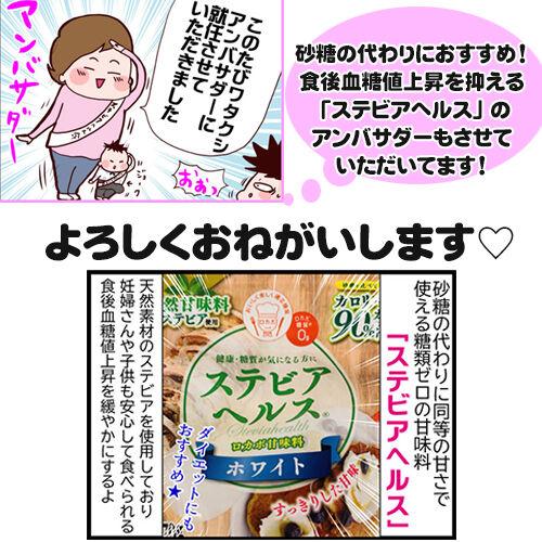 レンジで豆腐ガトーショコラ