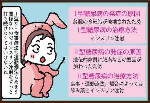 【糖尿病の教育入院11】糖尿病1型2型の違い3