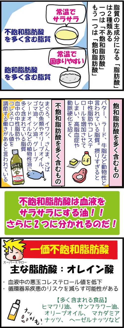 【血糖値対策】「油」を制するものは健康を制す!!3