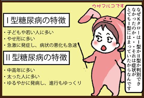 【糖尿病の教育入院11】糖尿病1型2型の違い2