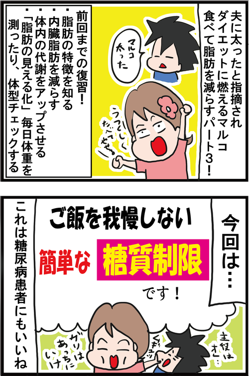 【高血糖対策】ガッツリ食べて楽に糖質制限ダイエット!1