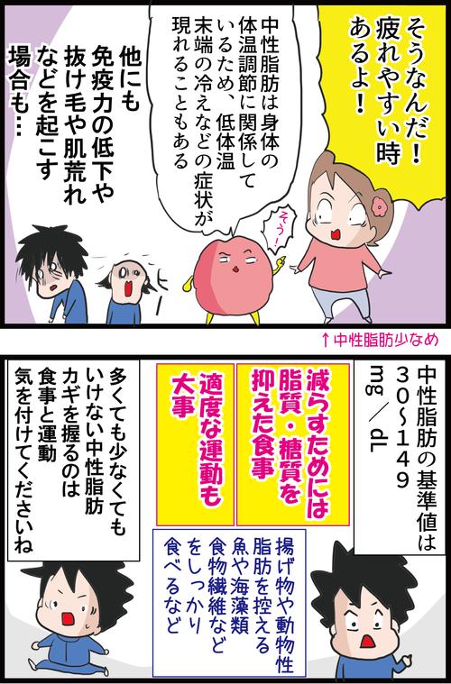 【血糖値】中性脂肪が高いとなぜ怖いのか?低すぎてもNG…!?4