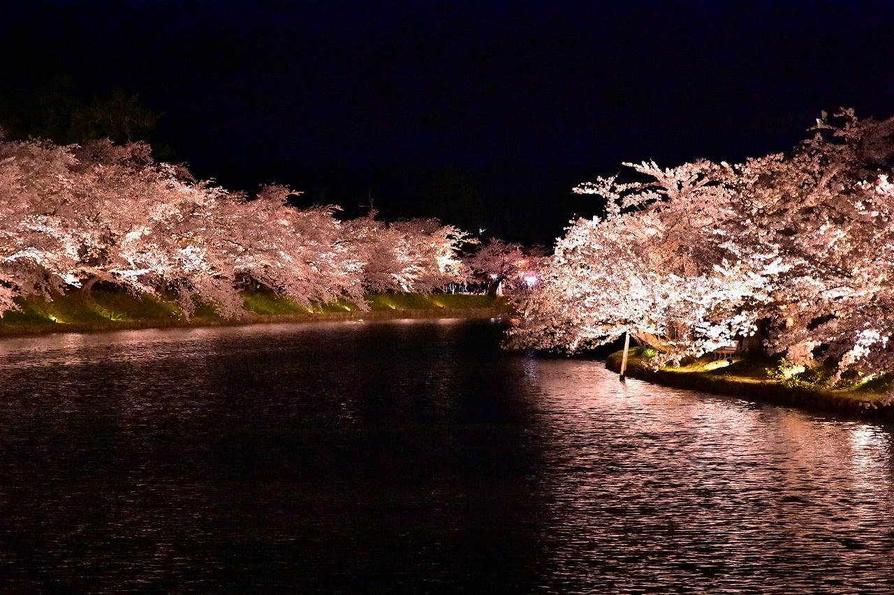 【2021年4月20日】弘前さくらまつり夜桜写真