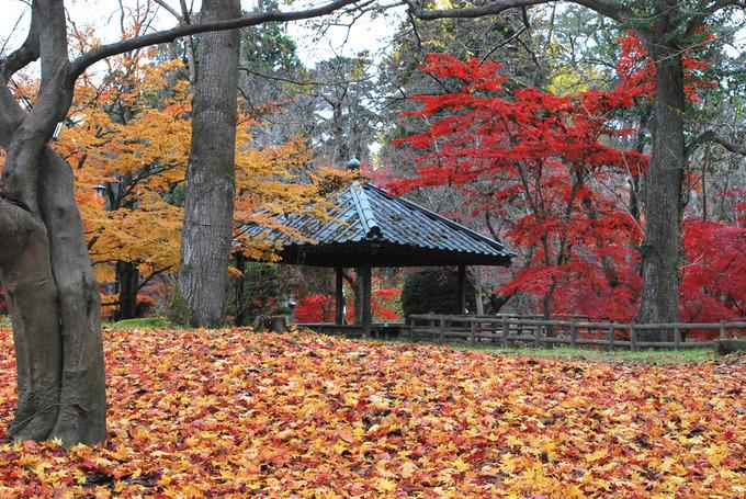 弘前公園東内門付近東屋