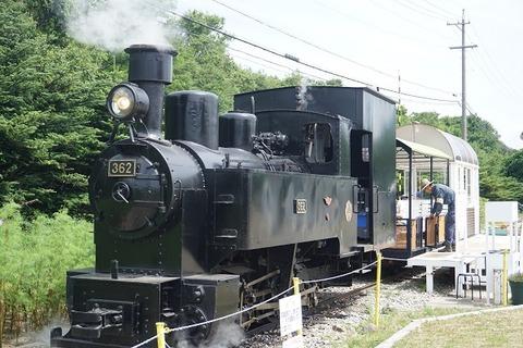 DSC08853