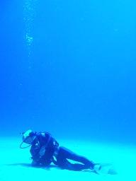 水面を見上る_256