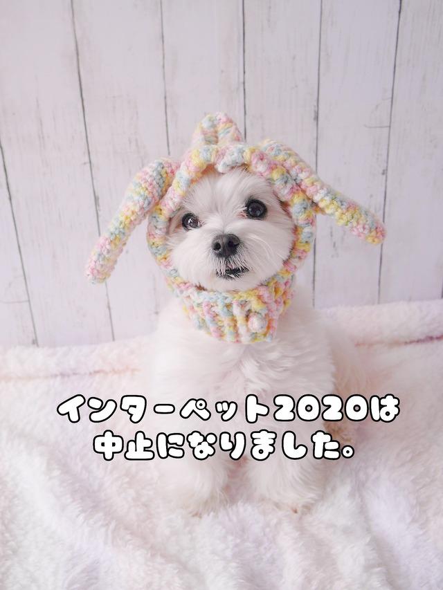20-02-26-09-23-54-784_deco