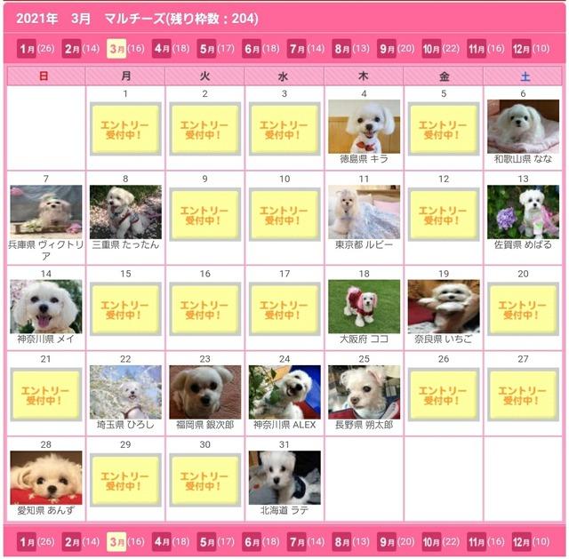 Screenshot_20200613-180858_Chrome