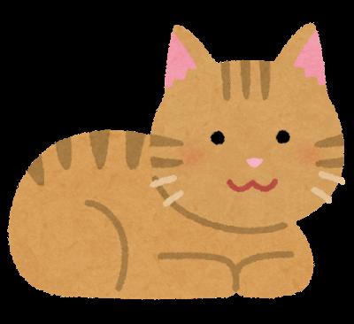 cat_koubakozuwari_brown