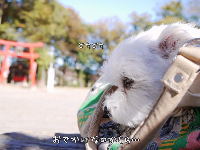 [画像:fb1cc7e8-s.jpg]