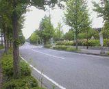 ca1a1359.jpg
