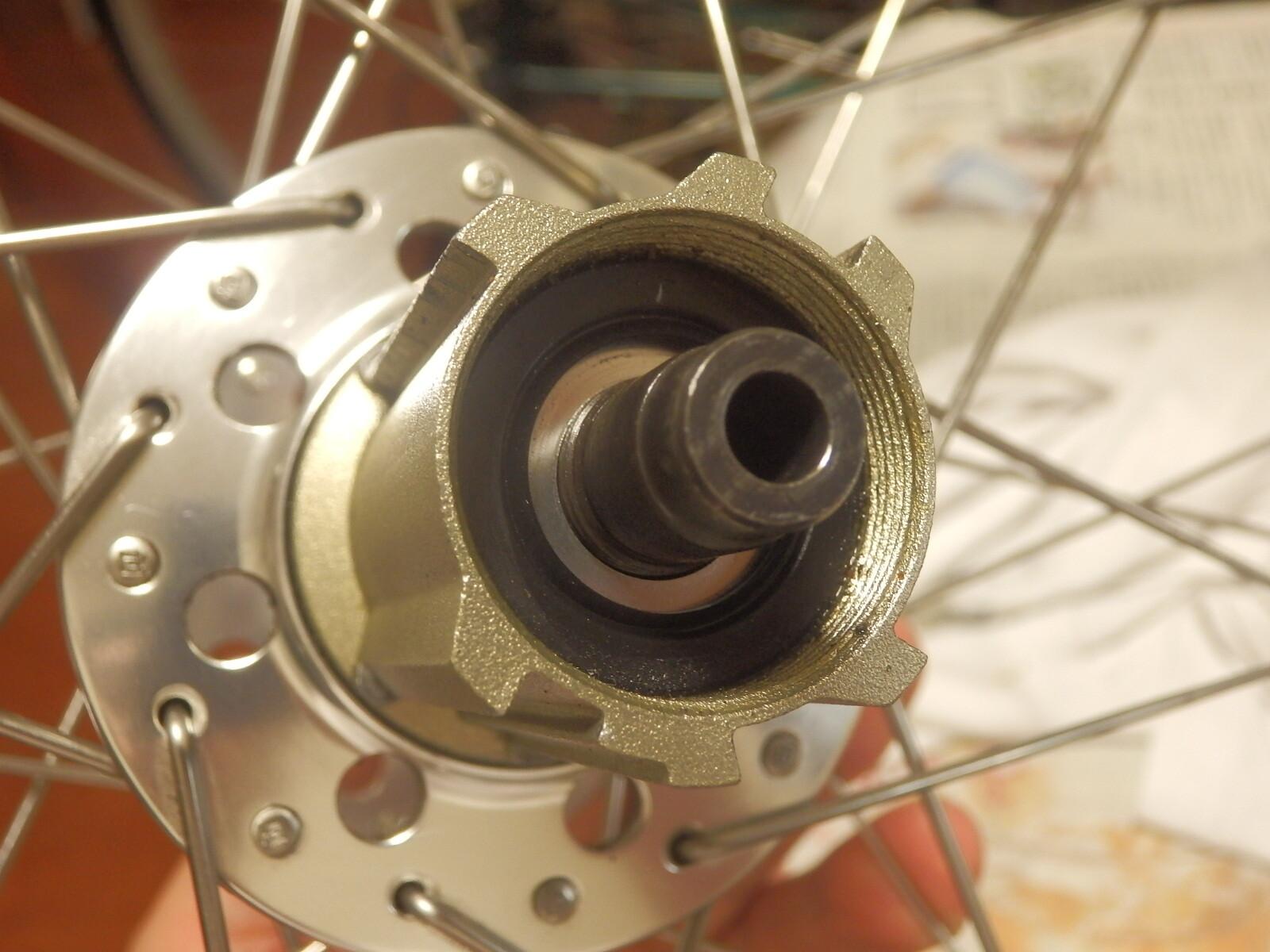 P5060003 (1)
