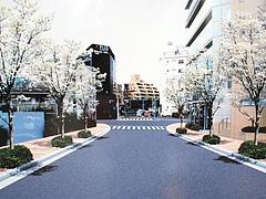 都市計画道路補助第19号線