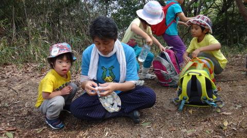 53e6376908 で、昨年から年長さんたちは、絵下山卒園登山の前に、 一年間かけて3回、山登りをする活動を取り入れました。