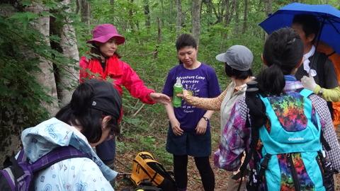 d6f7fe540e 広島登山研究所のブログ : 大万木山