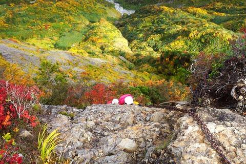 148 このちゃん、大日岳の最後の登り。