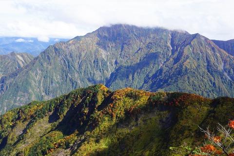 130 入道岳北尾根の紅葉がキレイ。