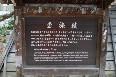 DSC04807