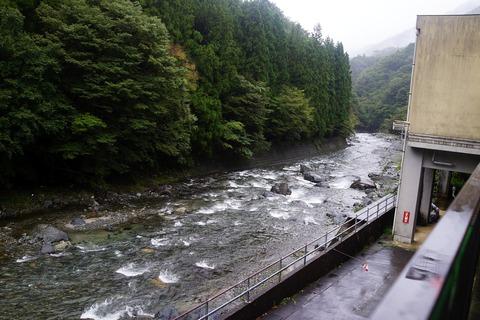 48 紅椿の湯のすぐ裏が道志川。