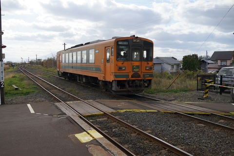 DSC03087