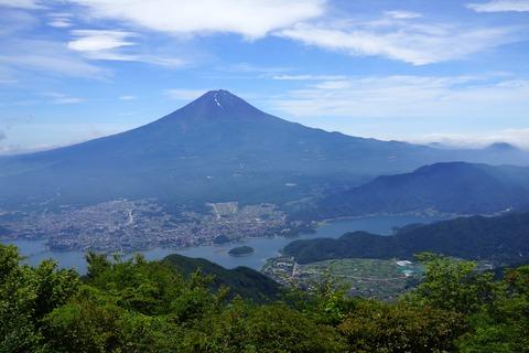 41 見晴台からドッカーンと富士山が見えた。