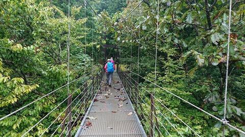 02 意外にしっかりした吊橋。