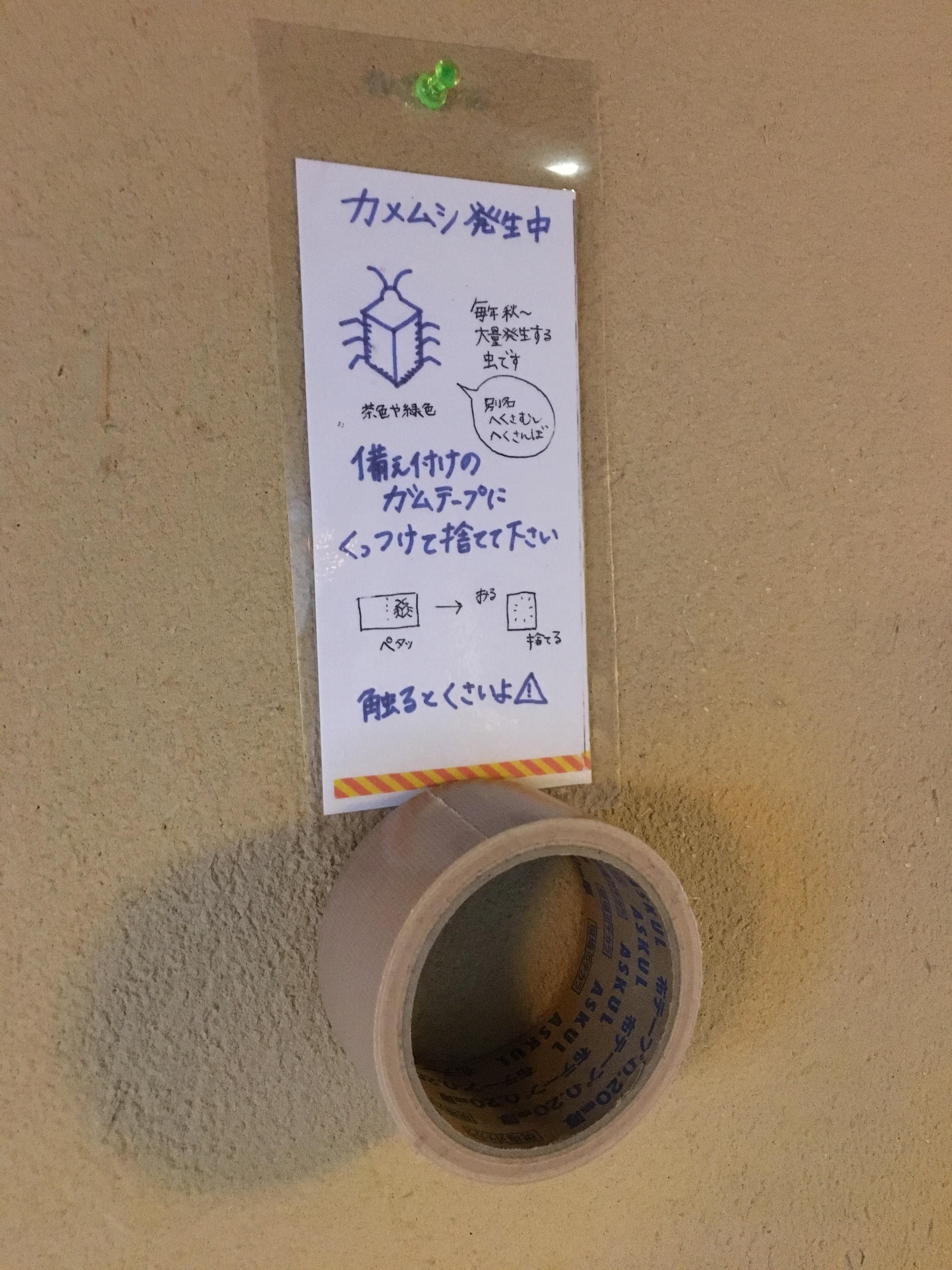 ガムテープ カメムシ